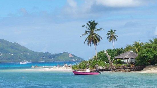 Cerf Island, เซเชลส์: mare e spiaggia