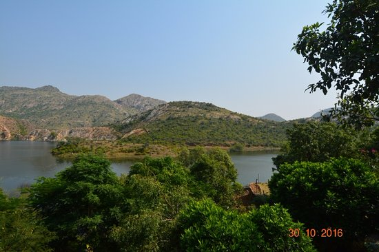 Zdjęcie Aravali Silence Lakend Resorts & Adventures Pvt. Ltd.