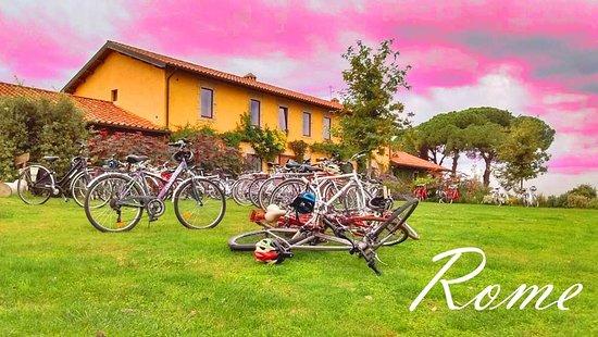Biga Bike