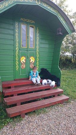 Kinvara, Ireland: A lovely Horsedrawn caravan style bedroom x
