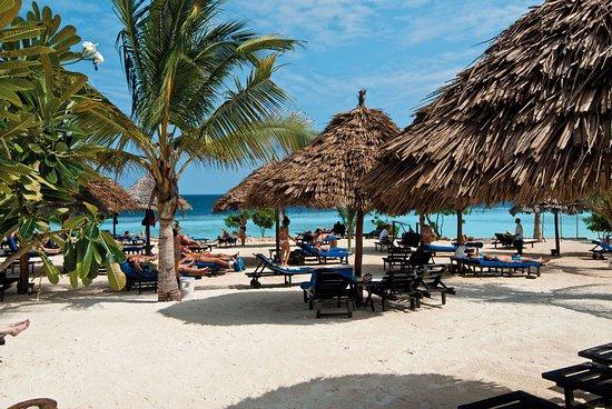 Diving Ocean Zanzibar My Blue Hotel