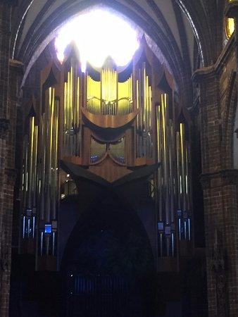 Zamora de Hidalgo, เม็กซิโก: organo de la catedral de zamora