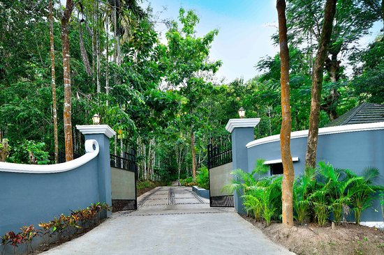 Wayanad Coffee Trail REsort - Picture of Wayanad Coffee Trail Resort ...