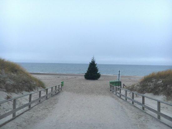 Dierhagen, Germania: Strandhotel Dünenmeer