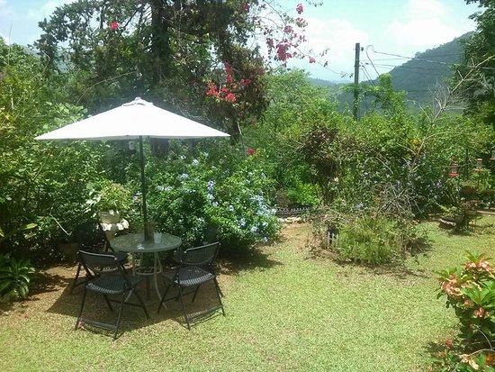 Yerette: Garden