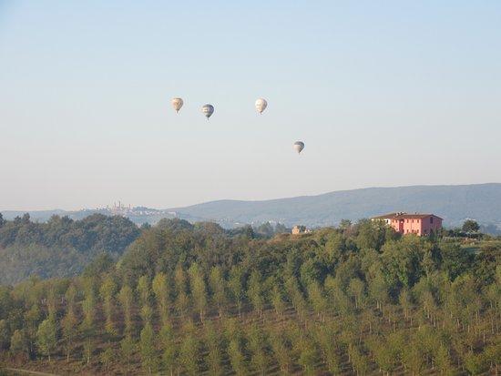 Certaldo, İtalya: View overlooking vineyard towards San Gimignano