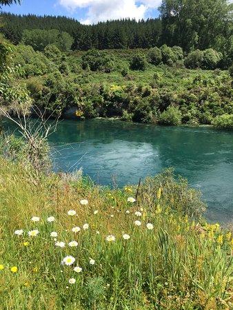 Ταούπο, Νέα Ζηλανδία: photo0.jpg