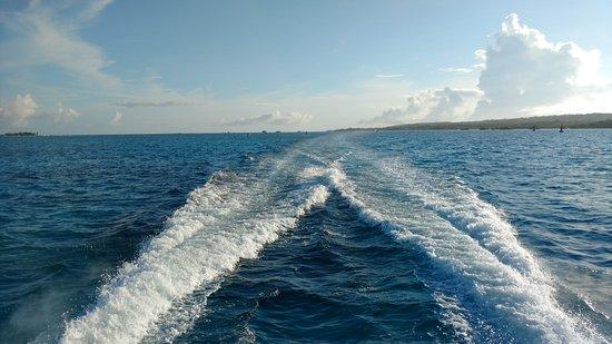 Conocemos Navegando