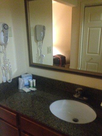 West Seneca, Estado de Nueva York: Sink area which is separate from shower (nice) with products
