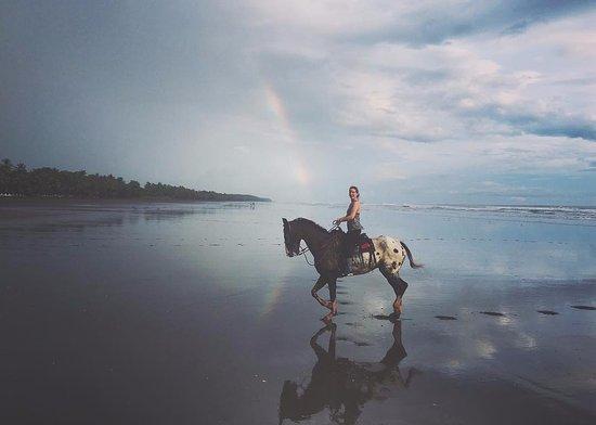 Esterillos Este, Costa Rica: Galán & ik