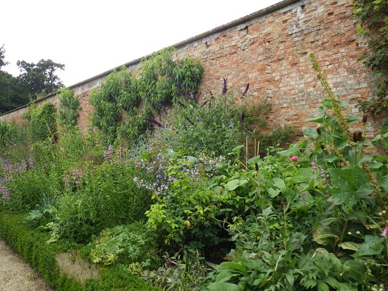 Faringdon, UK: Walled garden