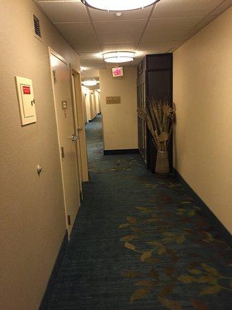 Candlewood Suites - Detroit/Ann Arbor: photo1.jpg