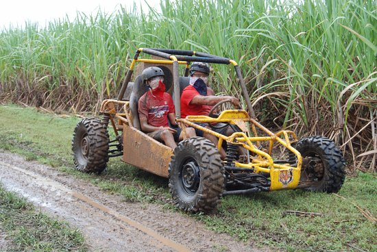 Pro Excursions Bayahibe Dune Buggy 2