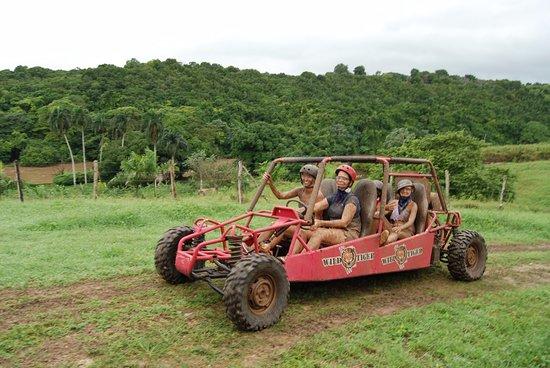 Bayahíbe, República Dominicana: Dune Buggy 3