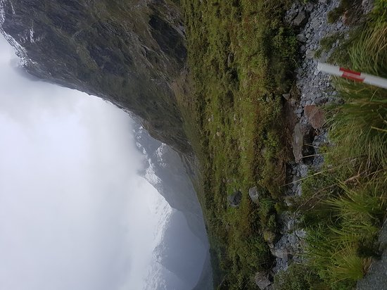 Fiordland National Park, New Zealand: Hollyford Track