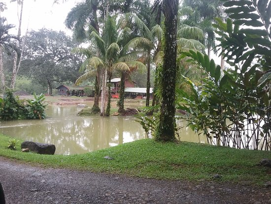 Chachagua, Costa Rica: Lagoon and stable