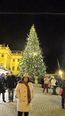 Kultur- und Weihnachtsmarkt Schloß Schönbrunn: The tree