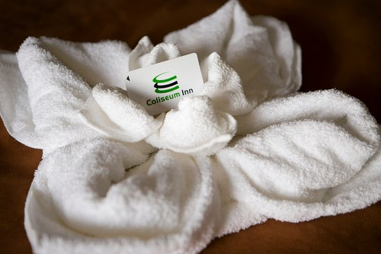 Coliseum Inn: Towel Flower
