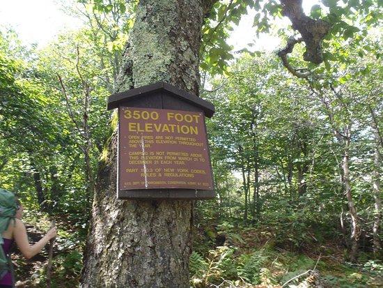 Fort Lee, Nueva Jersey: Elevation maker on Slide Mountain