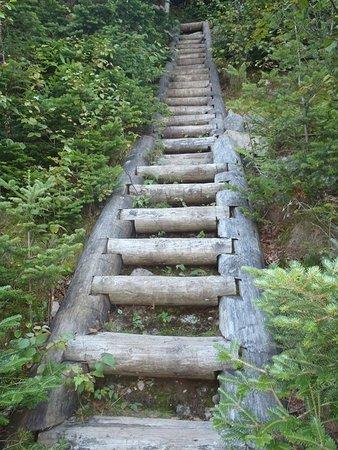 Fort Lee, Nueva Jersey: Ladder on Slide Mountain