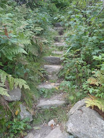 Fort Lee, NJ: Steps on Slide Mountain