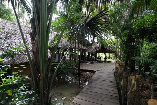 Orinoco Delta-billede