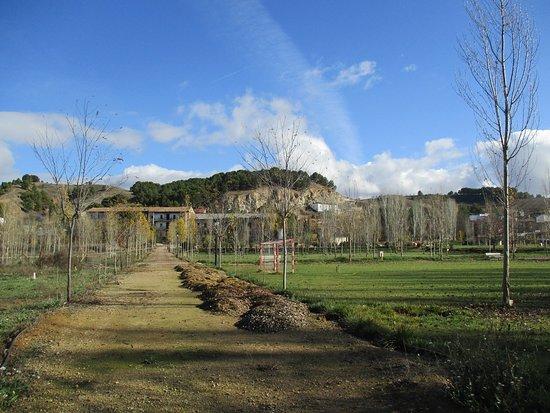 Paracuellos de Jiloca, España: Amplia y magnífica zona de esparcimiento, con lago-piscina, cesped, canchas y agradable paseo.
