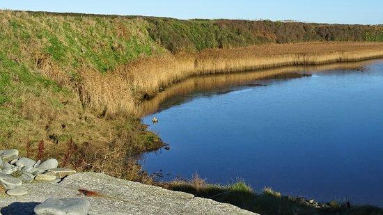 Kilkee, Irland: Flussmündung, River mouth, Kilbaha