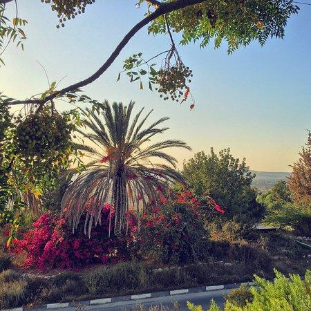 Neve Shalom, Israël : photo0.jpg