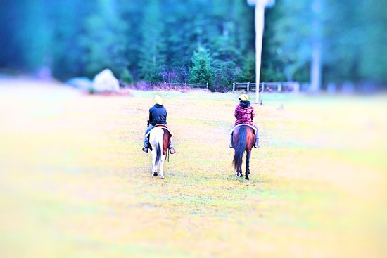 Charlotte Horse Riding: t