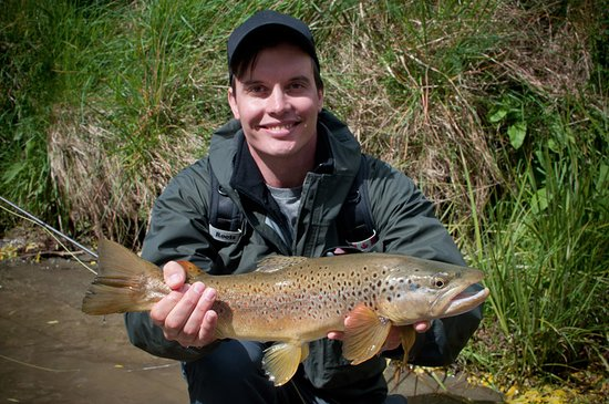 Stu's Fly Shop: Dry fly caught Mataura Brown.