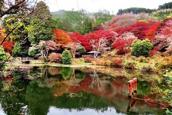 Torimiyama Park
