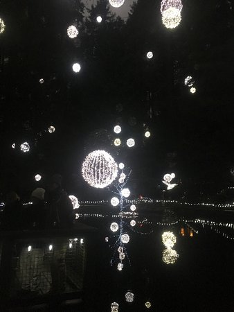 North Vancouver, Canadá: Holiday lighting!