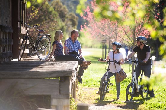 Cruise the Murray to Mountains Rail Trail in comfort & style with Bright Electric Bikes.