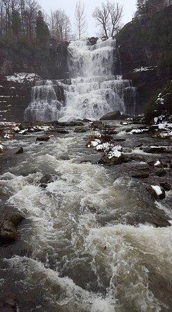Cazenovia, Estado de Nueva York: pic of falls from the foot bridge