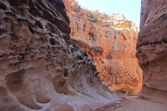 Fruita Campground: Slot canyon hike in the park