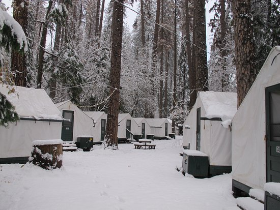 Half Dome Village View from the door of heated tent 305 after Thanksgiving snow. & View from the door of heated tent 305 after Thanksgiving snow ...