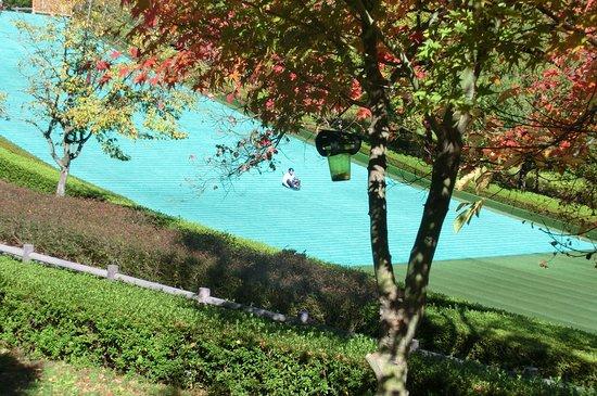 Komaki, Japón: そり滑りの施設もある