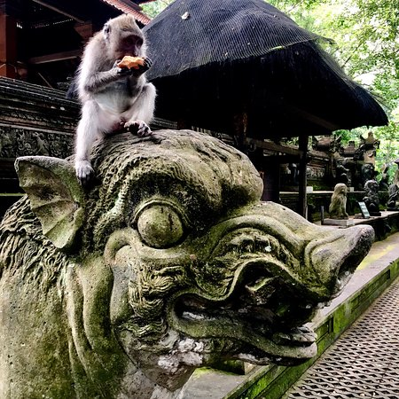 Sila's Bali Tours - Day Tours: Bali 2016! I went back and did 2 days of touring this time.