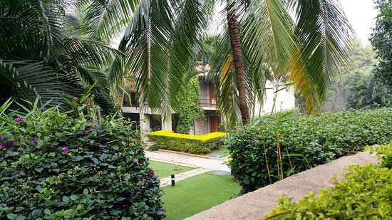 Outside Room outside room view - picture of angsana oasis spa & resort