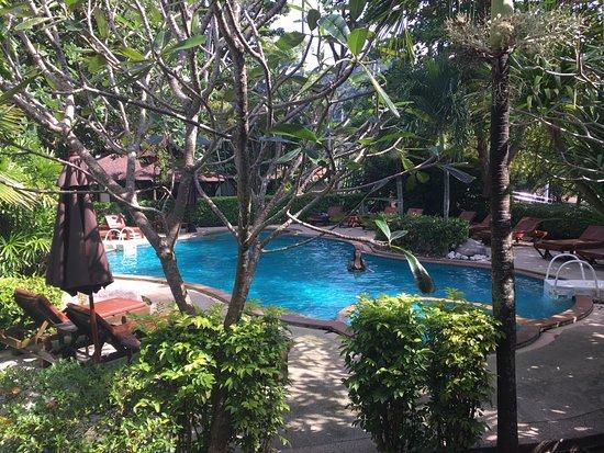 Sunrise Tropical Resort: Pool area