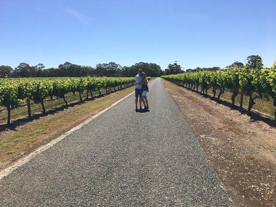 Tanunda, Australia: Willows Winery