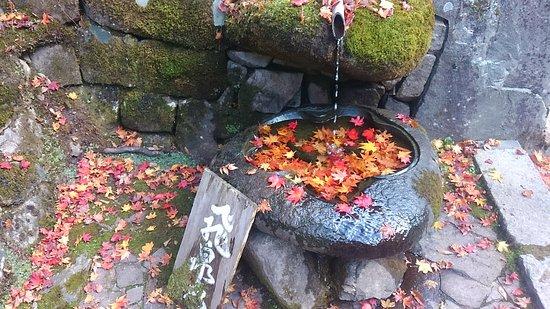 Higashiomi, Japan: KIMG0139_large.jpg