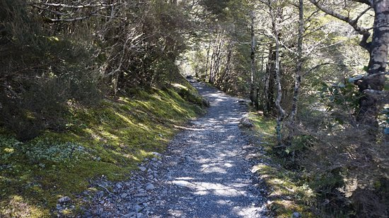 Arthur's Pass National Park, New Zealand: Rocky path to Devil's Punchbowl