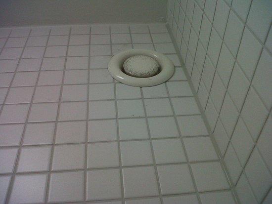 Jugendherberge Stuttgart Neckarpark : Detalle del ventilador del baño sucio