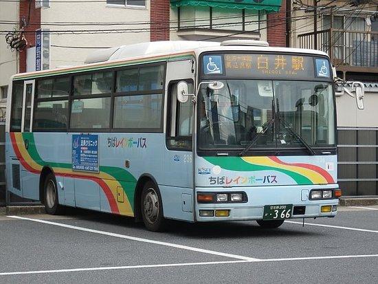 Chiba Rainbow Bus