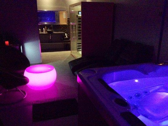 Castelnau-le-Lez, Francia: Espace Lounge