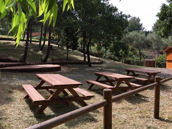 Fonteluna Residence: Area pic-nic e barbecue