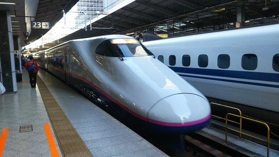 Tohoku, اليابان: DSC_2062_large.jpg