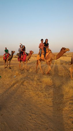 Camel Rile
